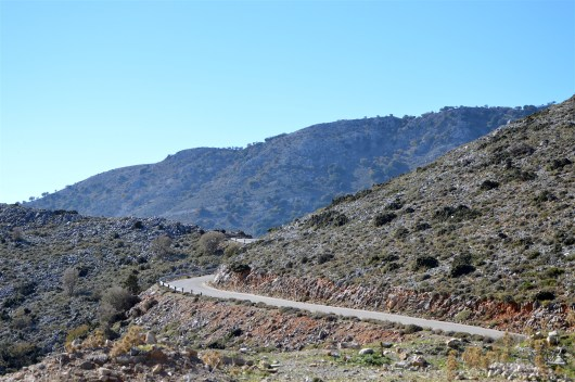 800 meters altitude at the White Mountains of Crete, 2015 November
