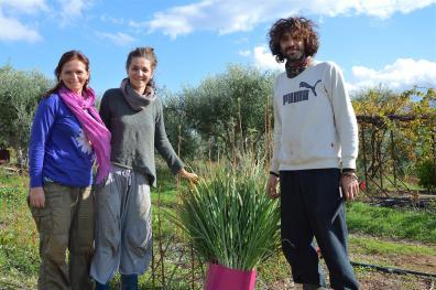 The harvesters - Ildiko, Dimitra & Leonidas -proudly presenting lemongrass