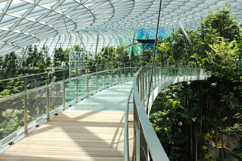 Jewel Changi Airport's Canopy Park is spread over 14,000 square metres and is home to more than 1400 trees and palms.
