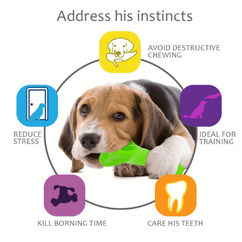 Nylon Chew toy for dogs