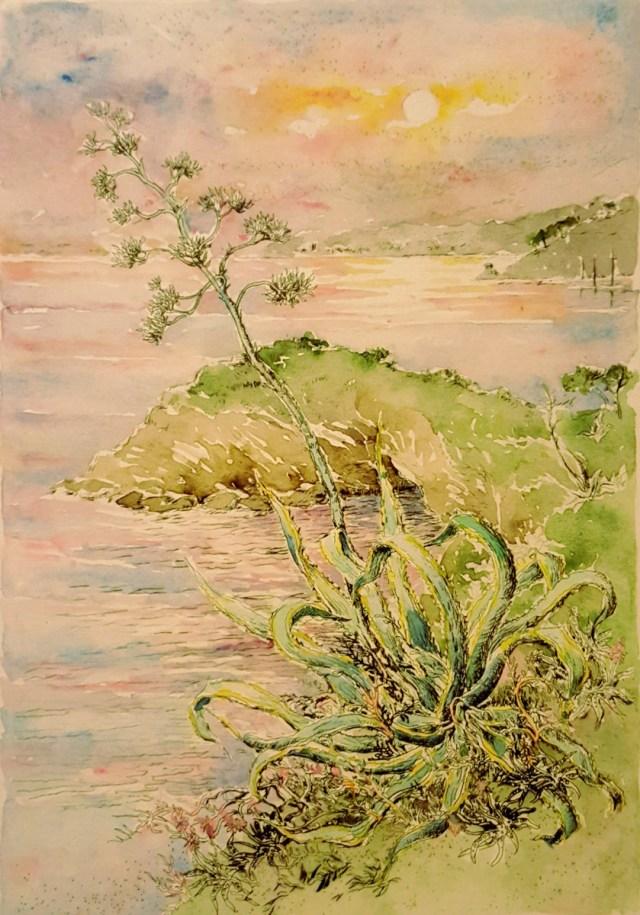 L'agave – acquaforte originale su lastra di rame acquerellata – cm. 14,5 x 21,5