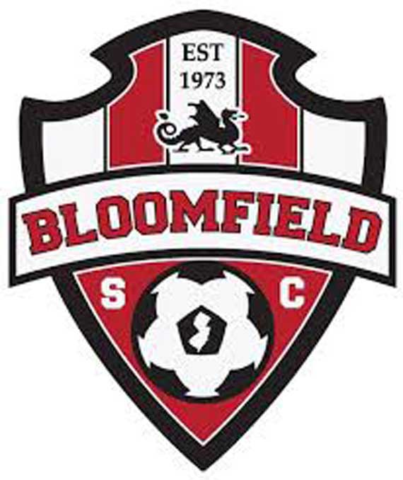 Bloomfield Soccer Club to start special needs league