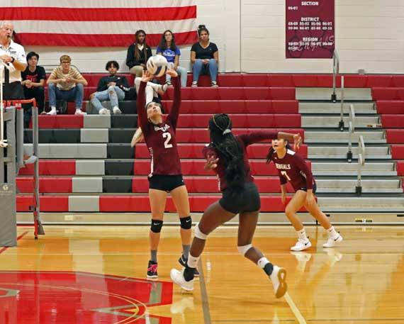PHOTOS: Bloomfield HS girls volleyball team defeats Belleville
