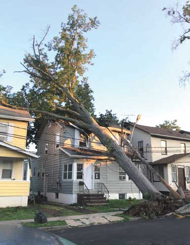 Storm causes damage within Irvington Township