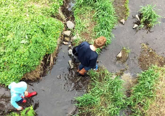 River Day cleanup returns to South Orange for 10th year on May 2