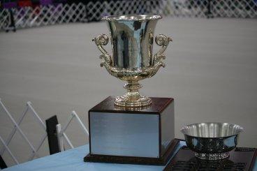 Stephens trophies2