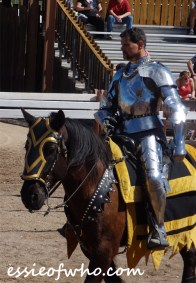 arizona renaissance festival march 11 2017 (14)