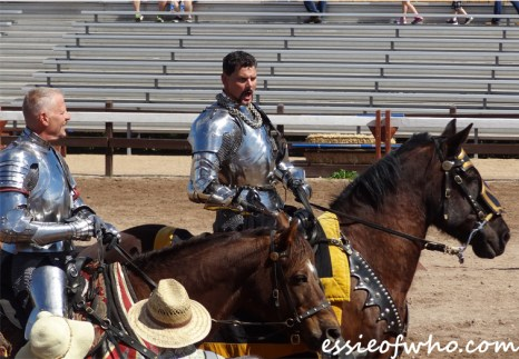 arizona renaissance festival march 11 2017 (17)