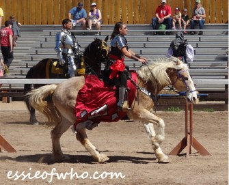 arizona renaissance festival march 11 2017 (23)