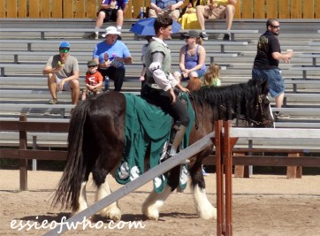 arizona renaissance festival march 11 2017 (24)