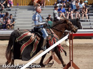 arizona renaissance festival march 11 2017 (25)