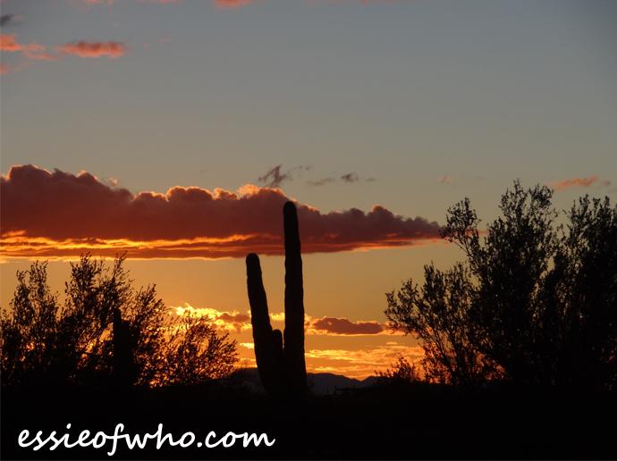 january-2017-sunset-photo-11