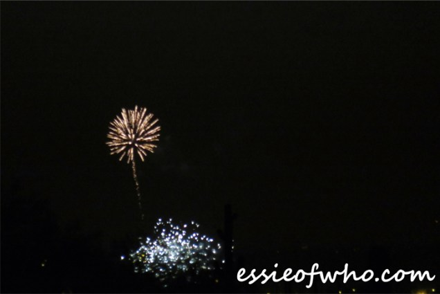2017 4th of july firework (10)