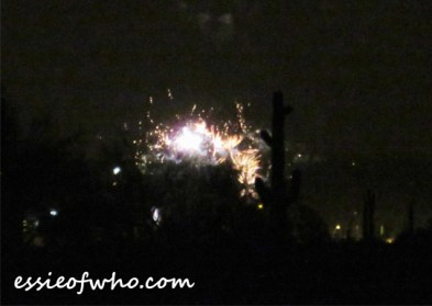 2017 4th of july firework (16)