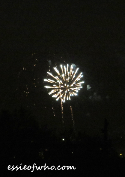 2017 4th of july firework (18)