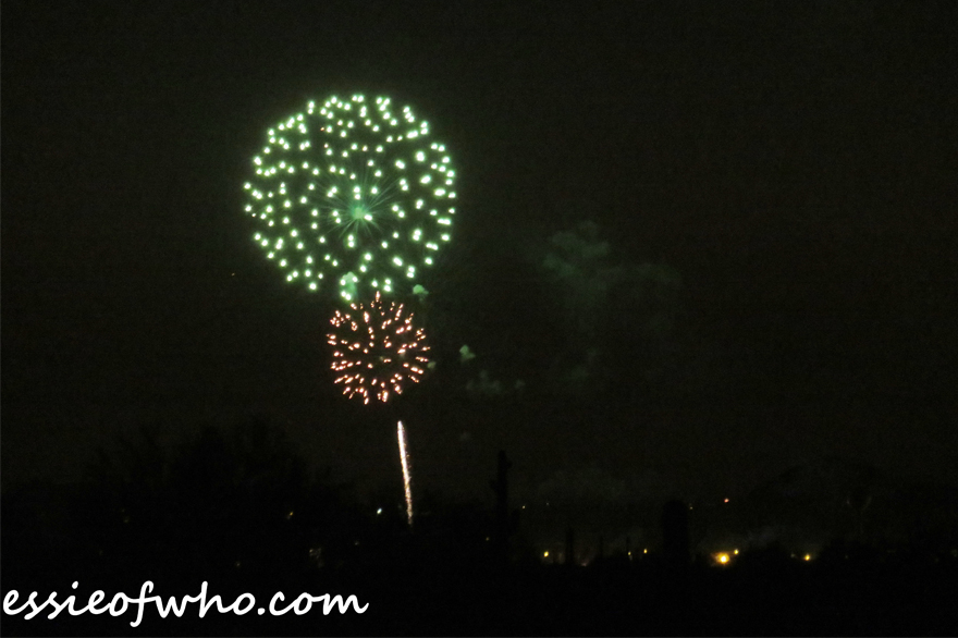 2017 4th of july firework (19)