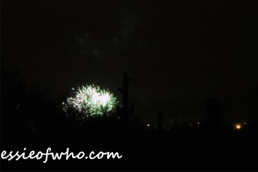 2017 4th of july firework (9)