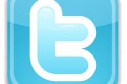 Twitter-Logo-300x293-1-250x165