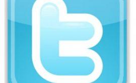 Twitter-Logo-300x293-1-270x165