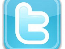 Twitter-Logo-300x293-1-275x210