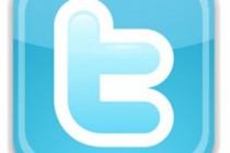 Twitter-Logo-300x293-210x140