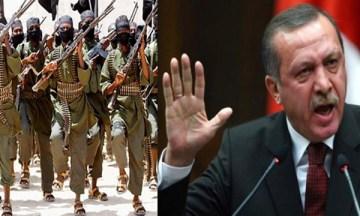 ErdogAlqae