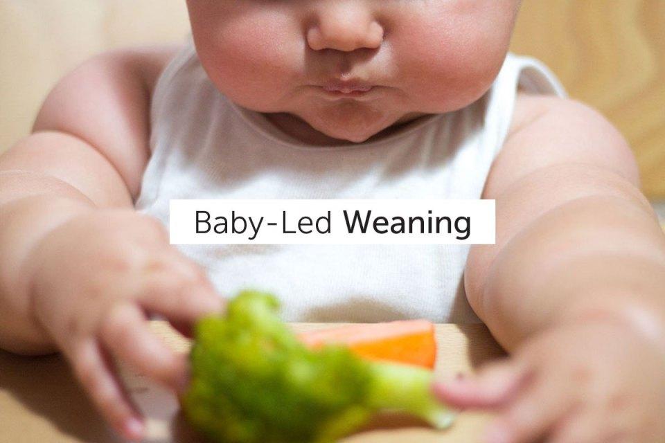 Baby-Led Weaning o la alimentación complementaria autorregulada