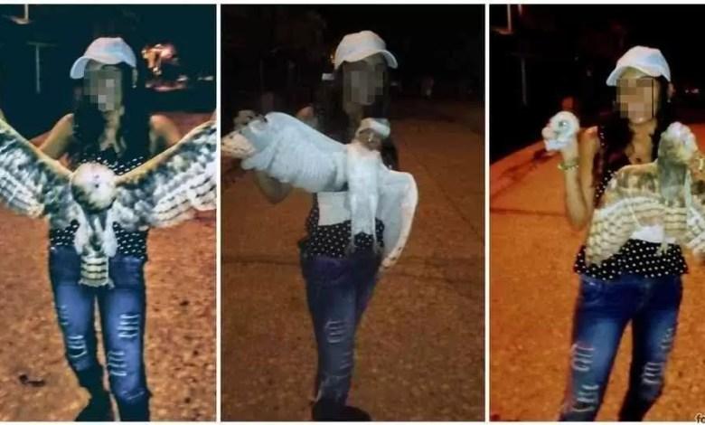 Photo of Le cortó la cabeza a una lechuza y lo subió a las redes: sicarios la asesinaron