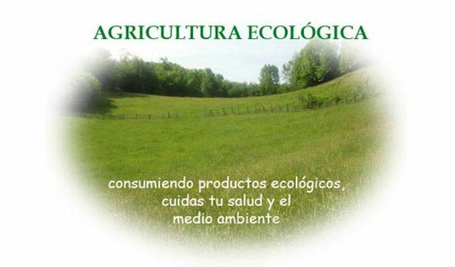 La PAC y la Agricultura ecológica