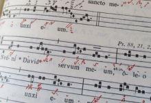 Foto de La música, instrumento de sanación.
