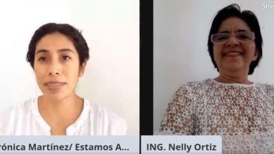 Foto de Apicultores en Yucatán en crisis emocional porque desaparecen abejas
