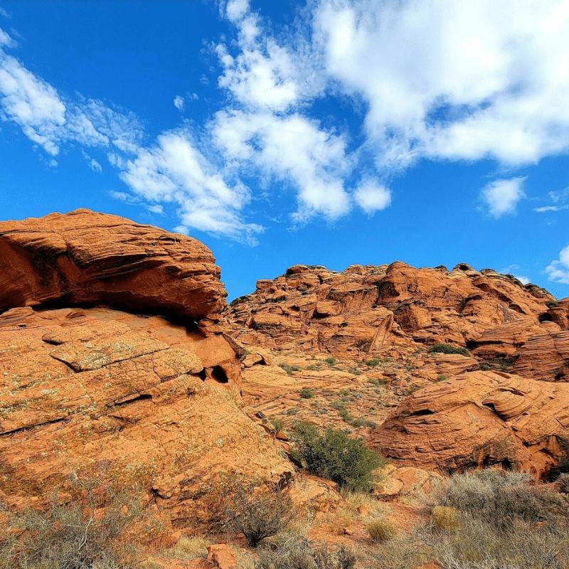 Paradise Rim-Gecko-The Gap Trail