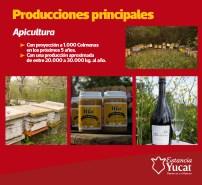 yucat11