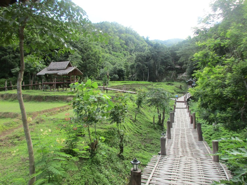 Bambu bridge