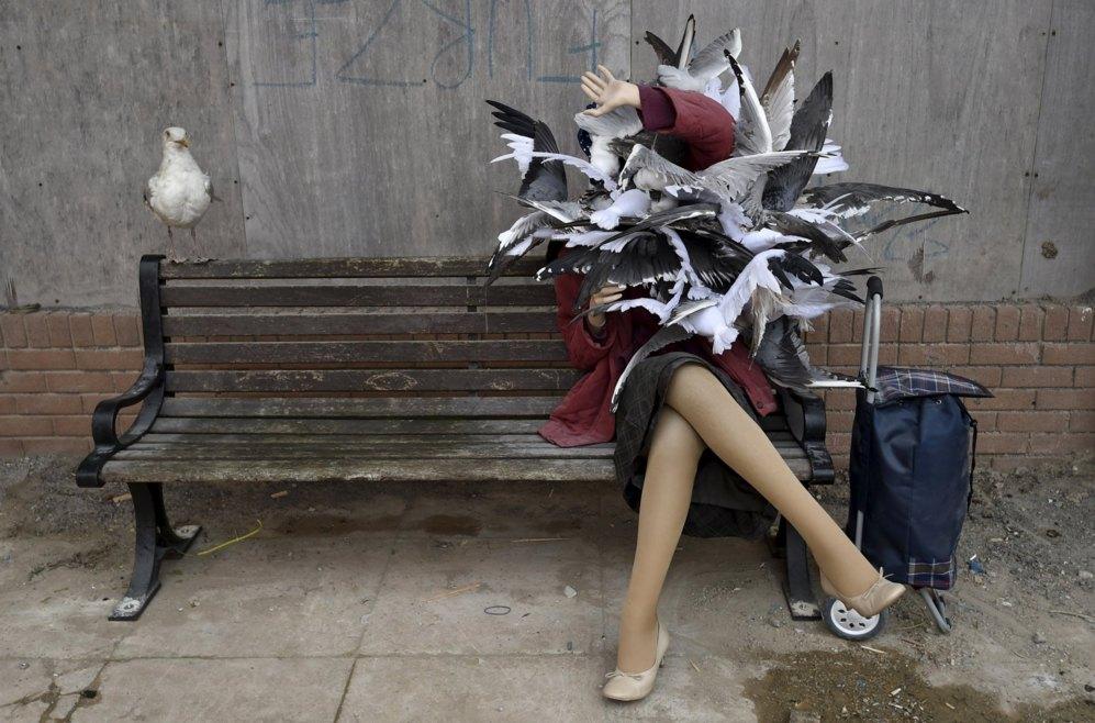 No todo son atracciones en Dismaland, un lugar imaginado por el polifacético Banksy (cuya identidad se desconoce) y que también tiene esculturas como ésta de una mujer atacada por gaviotas.