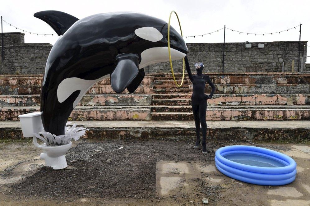 Una parodia de los parques acuáticos, en la que una orca coge impulso desde un W.C.