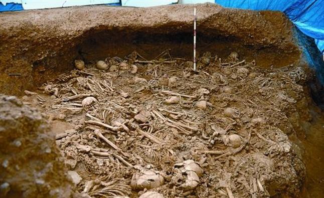 Algunos de los restos humanos del neolítico hallados durante los trabajos del AVE en La Sagrera. FRANCESC ANTEQUERA / PAZ BALAGUER