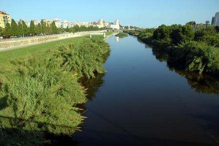 Vista del Parc Fluvial del Besòs, desde Santa Coloma.