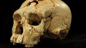 Hallado un santuario paleolítico con más de 100 grabados en L'Espluga Francolí, Periódico San Juan