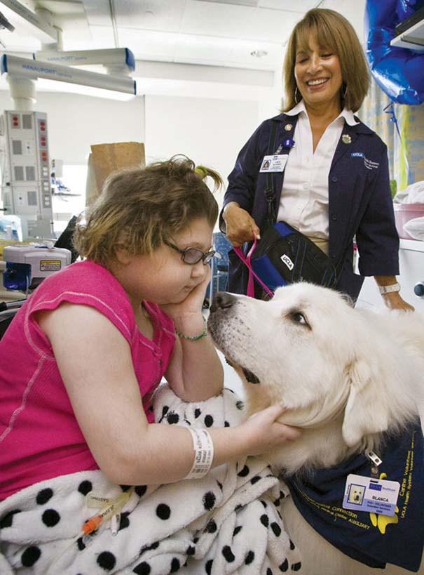 En este hospital está permitido que las mascotas visiten a sus humanos para ayudarles a sentirse mejor