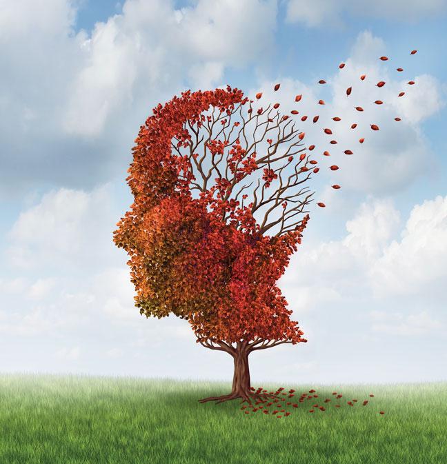 Lo que consideramos el más fiel recuerdo tal vez sea una adaptación de nuestro cerebro.