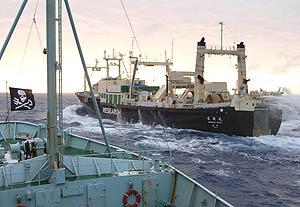 Imagen del 'Nisshin Maru' tomada el 9 de febrero desde un barco del grupo de activistas 'Sea Shepherd'. (Foto: AFP)