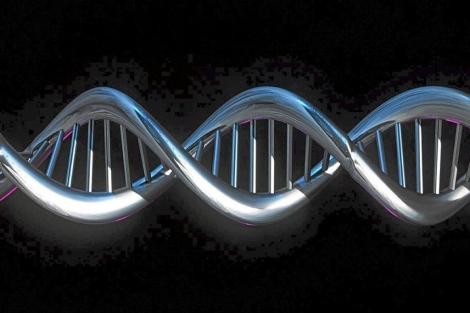 Imagen computerizada de una cadena de ADN.| El Mundo