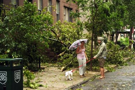 Varios árboles caídos en una calle de Nueva York. I Efe