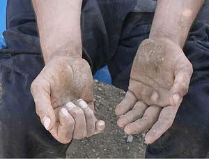Imagen de las manos de uno de los cuadrúpedos. (Foto: Nicholas Humphrey)