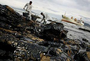 Los vertidos y el intenso tráfico marítimo han degradado el ecosistema de la bahía. (AFP)