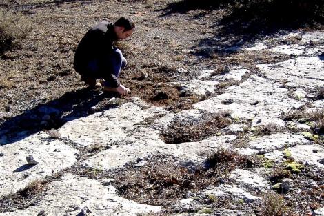 Huellas de los dinosaurios descubiertas en Teruel. |Dinópolis