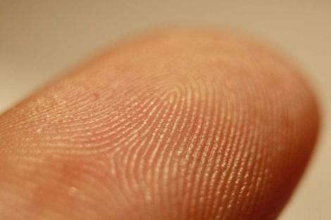 Primer plano de una huella dactilar. | Frettie