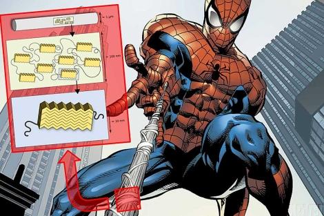 Las propiedades de los hilos de tela de araña deben a su diseño nanoestructurado.