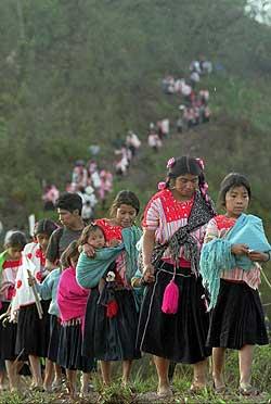 indigenas chiapas